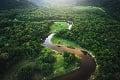 Významný objav dvanásťročnej štúdie paleobiológov: Vieme, ako vznikol amazonský prales!