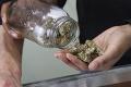 Prelomové rozhodnutie súdu: Ďalší krok k dekriminalizácii marihuany!