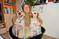 Nevidiaca Jarka sa sama naučila cvičiť vodiace psy!