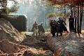 Rusi oficiálne priznali vinu: Masaker v Katyni nariadil Stalin