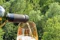 Následky koronakrízy v Rakúsku: Ľudia vo veľkom nakupovali víno v obchodoch aj na internete