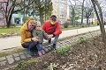 Slovensko zasiahne drastická zmena počasia: Na jar zabudnite, udrú mrazy!