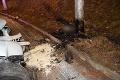 Tragická nehoda v Banskej Bystrici: Spolujazdkyňu vymrštilo z auta, vodičovi († 26) už pomôcť nedokázali