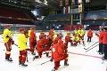 Aj taká je realita slovenského hokeja: Posily hrajú v Trenčíne len za letenky alebo zadarmo