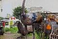 Vladimír si doma zo železného šrotu urobil zoo: Takéto zvieratá ste jakživ nevideli!