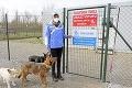 Štedrý sponzor dal psíkom z východu státisíce €: Kto je ten anonymný darca?! Jedno je isté