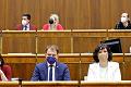 Čepček hlasoval za odvolanie ministerky, približne polovica hnutia OĽANO neprišla: Chcú pripraviť Kolíkovú o flek?