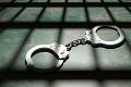 Dostali aj jeho: Podpredseda Zlatého úsvitu si odpyká trest v prísne stráženom väzení