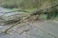 Po búrkach na východe ostala spúšť: Popadané stromy a krúpy ako golfové loptičky!