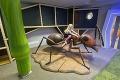 Galéria, ktorú slovenské deti zbožňujú: K mega mravcom a škrečkovi pribudli novinky!