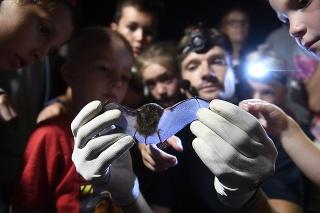 Peter Bačkor ukazuje odchyteného netopiera návštevníkom Národnej zoologickej záhrady Bojnice počas Noci netopierov.