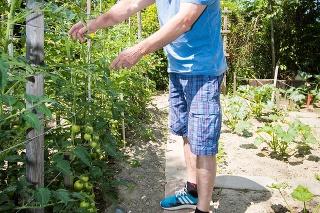Odborníci neodporúčajú vodou zo studne polievať, Pavol (67) sa preto napojil na mestskú vodu.