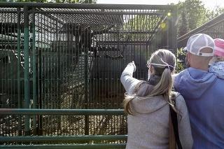 Máj 2020: Zoologická záhrada oslávila 60. výročie svojho otvorenia.