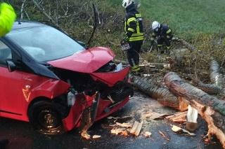 V Petržalke spadol strom na auto.
