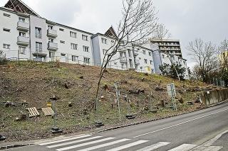 Drotárska: Výsledkom možnej zámeny pozemkov by podľa Starého mesta bolo, že pozemok na Drotárskej by sa stal verejnou zeleňou, resp. parkom, investor by svoj zámer nerealizoval a záujemca o zámenu pozemku by zámenou získal do vlastníctva pozemok pod budovou (stavbou), ktorú už vlastní.