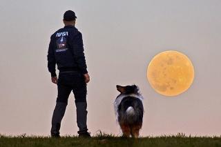 Jeho doposiaľ posledný záber Supermesiaca pochádza z minulého roka, zapózoval aj jeho psí parťák.