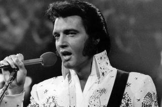 Spevák Elvis Presley