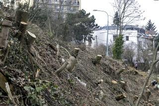 Pozemok, na ktorom prebehol sporný vyrúb stromov na Drotárskej ulici v Bratislave.