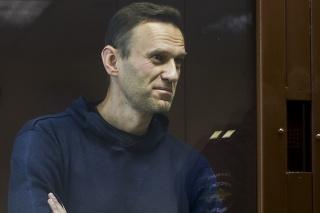 Ruský opozičný líder Alexej Navaľnyj na súde