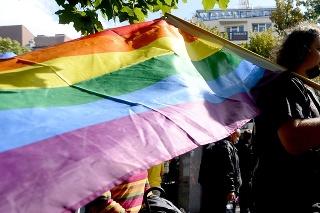 Na snímke sprievod za práva LGBTI ľudí Dúhový PRIDE v Bratislave v roku 2013.