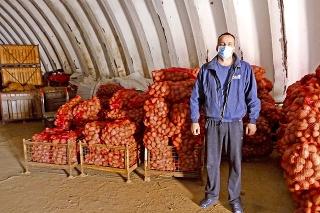 Poľnohospodár zemiaky zo zeme vyberá 30 - ročným kombajnom.