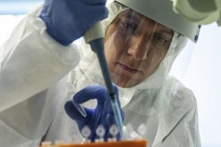 Rusi spustia hromadné očkovanie rizikových skupín obyvateľstva v novembri alebo decembri (ilustračné foto).