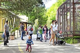 Návštevníci musia v zoo dodržiavať prísne  hygienické nariadenia.