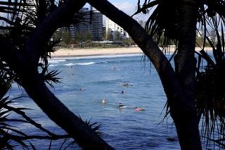 Surferi čakajúci na vlnu v oblesti Gold Coast.