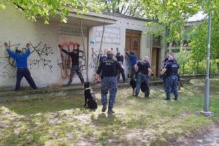 Policajní kynológovia zabránili krádeži na Uránovej ulici.