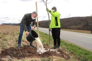 Stromy sadil aj košický župan Trnka.