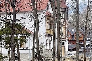 Tatranská Lomnica, 18.4.2021 o 13:00 hod.: Lane sa spokojne pásli pri rušnej ceste.