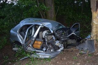 33 ročný vodič pravdepodobne nezvládol prejazd pravotočivou zákrutou a auto zišlo do priekopy a narazilo do stromu.