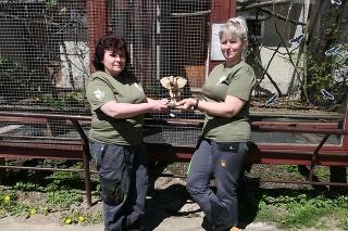 Helena (52) a Ivana (42) s ocenením Biely slon.