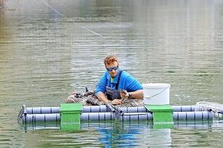 Odborník a vedec Daniel Gruľa vyberá korytnačky z pascí pri Vtáčom ostrove.