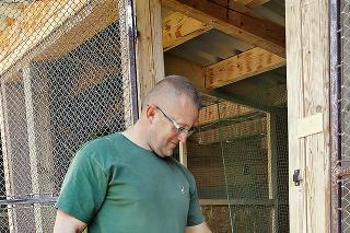 Samec Gusto je už z Mariánovho chovu. Hluchánie kohúty merajú až 60 cm a vážia viac ako 5 kg.