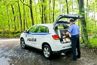 Polícia absolvovala netradičný výjazd priamo do lesa.