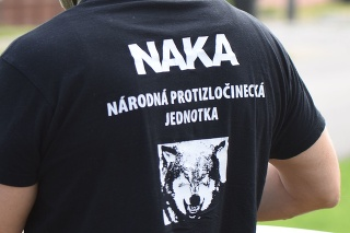 NAKA opäť zasahuje proti korupcii v štátnych lesoch (ilustračné foto)