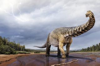 Veľkosť dinosaura vynikne v porovnaní s bežným súčasným bagrom.