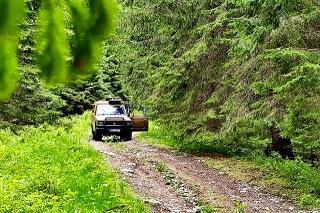 Dušana objavili v lese a vedľa neho našli medvedie stopy.
