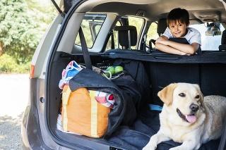 Prevoz psov v kufri nie je ideálny, lepšie sú prepravky.