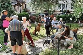 Seniori pri návšteve  psíkov zabudli na bolesti.