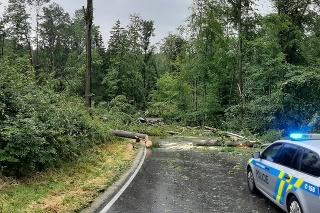 Strom spadol na osobné auto a zabil dvoch ľudí. Nehodu neprežili muž a žena, ktorí sedeli na predných sedadlách. V aute boli aj dve deti, ktoré utrpeli zranenia.