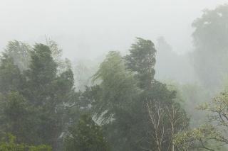 Stormy weather with rain