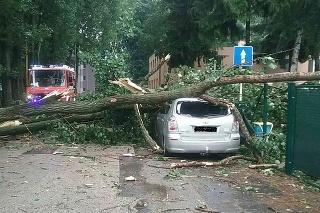Hasiči vo väčšine prípadov odstraňovali popadané stromy z ciest, zaparkovaných vozidiel a elektrických vedení.