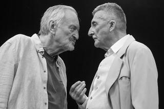 Starí majstri: V predstavení hrali dvoch bratov, potomkov slávnej divadelnej rodiny, ktorí sa neznášajú.