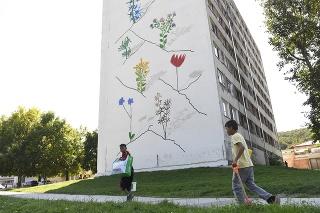 Návrh kvetov vychádza z intenzívnej niekoľkotýždňovej spolupráce s miestnymi rómskymi deťmi.