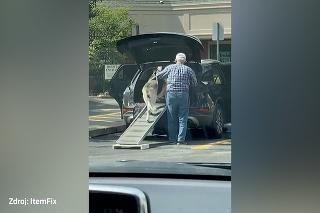 Dojímavé! Dedko pomáha svojmu psíkovi v rokoch nastúpiť do auta