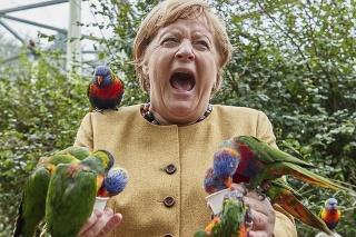 Rozlúčka: Jednu z posledných návštev vo funkcii kancelárky absolvovala vo vtáčej zoo v Marlowe a výsledkom je takáto fotka.