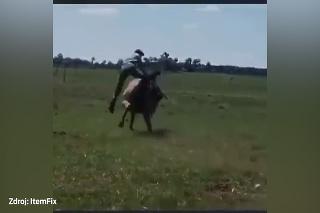 Neuveriteľné salto na koňovi: Ako sa mu toto podarilo?