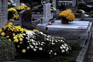 Bratislavské cintoríny
